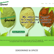 Guilty_Secrets_Gourmet_Seasonings